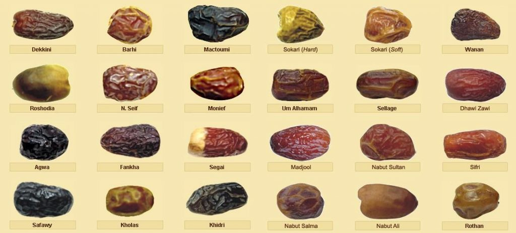 8 jenis kurma popular yang mungkin anda pernah makan